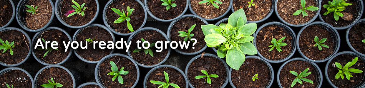 Are you ready to grow with DLP Coaching?